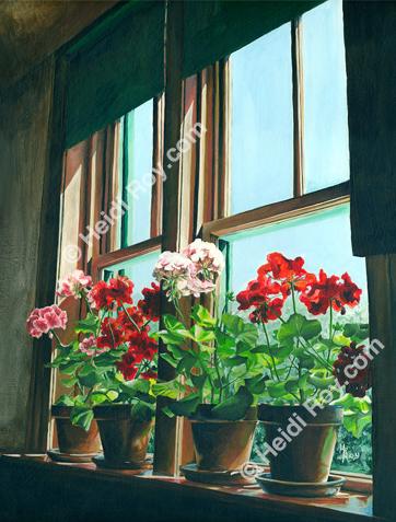 Sunlit Geraniums